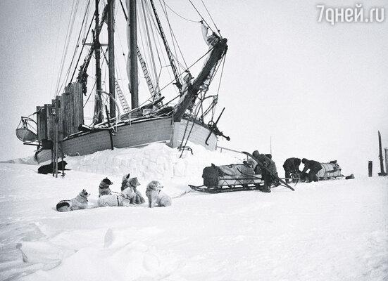 Экспедицию к Южному полюсу Амундсен организовывал в долг. Из порта он выходил ночью, спасаясь от кредиторов