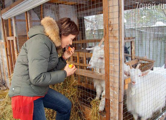 «У меня на участке целое хозяйство: козы, куры, петухи, три кошки идве собаки. И все это богатство — мое!»