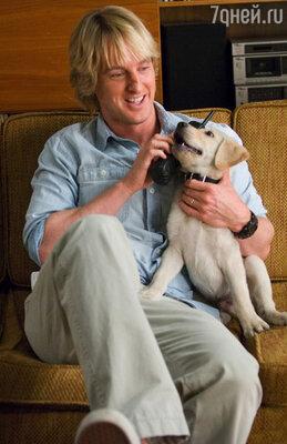 Оуэн Уилсон в роли журналиста Джона Грогана. «Марли и я». 2008 год