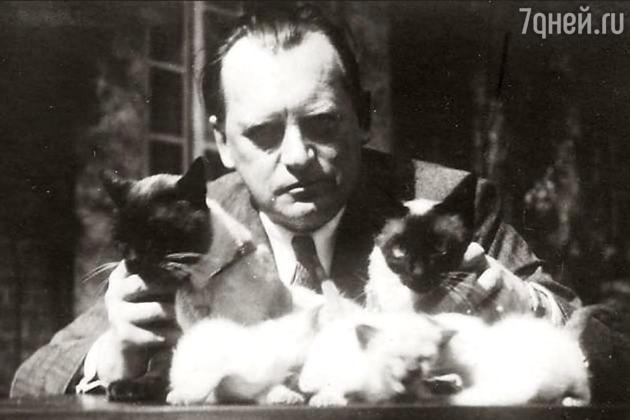 Александр Алехин с котами