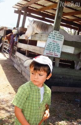 Матвей — очень симпатичный, добрый мальчик, просто живет в каком-то своем, придуманном мире...