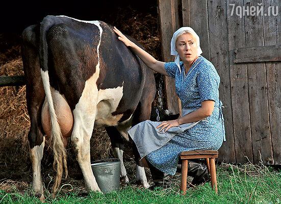 Мария Шукшина боялась подходить ккорове, нопересилила страх и затри дубля сама надоила полведра молока
