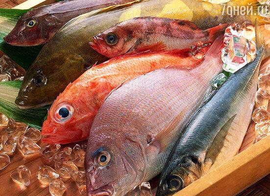«Среда обитания»: «Крашеная рыба»