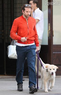 Бредли Купер с собакой