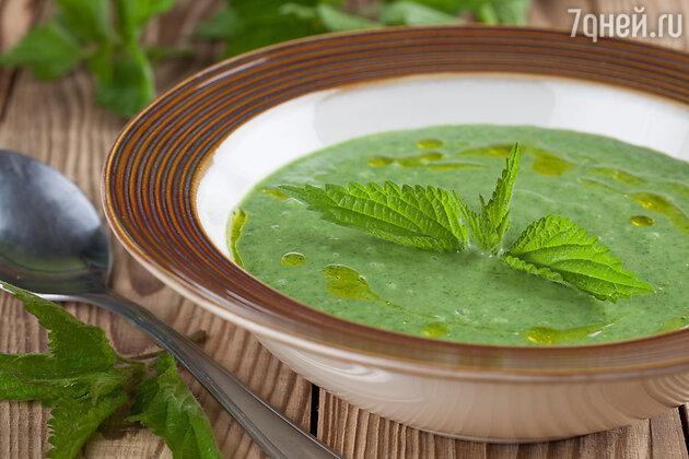 Суп из молодой крапивы