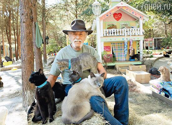 «Мэр» кошачьего города Крэйг Грант со своими питомцами