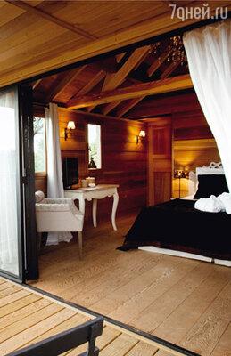 В этом доме, «встроенном» в сосну, есть даже спальня