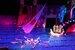 Елка на воде «Сказка о Салтане»