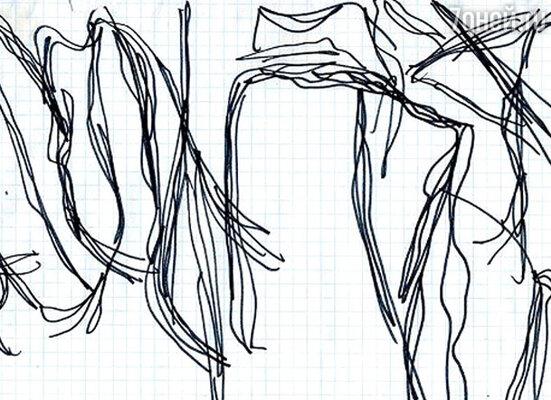 Аня Желудь. «Комнатное растение. Полная версия»