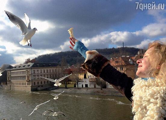 Анна нашла подход к пернатым обитателям Праги