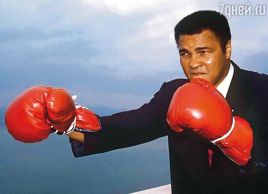 Великий Мохаммед Али с детства боялся темноты. Не сумев забыть этот свой страх, боксер был вынужден в начале 80-х расстаться со спортом