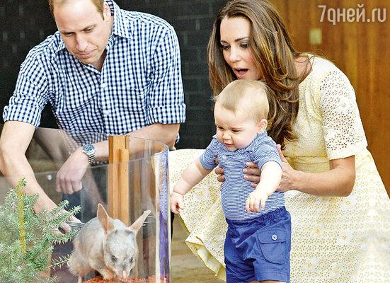 Юный принц Джордж уже успел проявить себя какбольшой любитель животных. (Принц Джордж с родителями в зоопарке в Австралии)