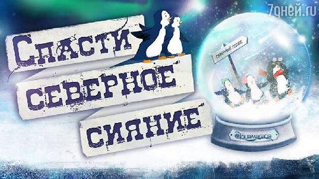 Водное шоу «Спасти северное сияние» в СК «Олимпийский»