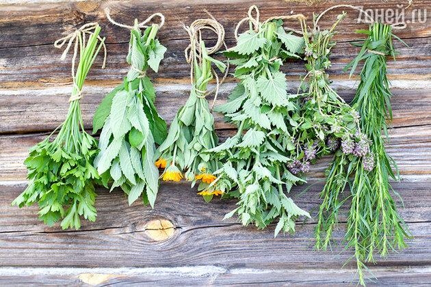 Есть старинный способ от зависти огородиться. Нужно заварить чай из двенадцати трав, и чем душистее и вкуснее чай, тем лучше
