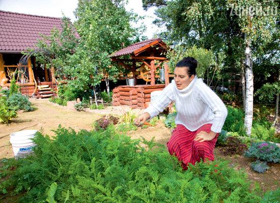 На даче у Ваенги — обширное хозяйство, с которым она еле успевает управляться