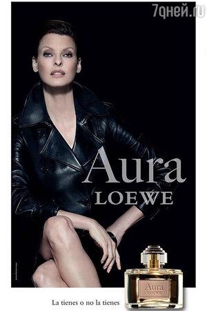 ����� ����������� � ������� ������� Aura Loewe Magnetica �� Loewe