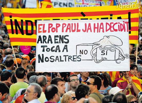 За два дня до финала болельщики испанской сборной вышли на улицы Барселоны  с транспарантом: «Осьминог Пауль сказал нам «да». Теперь очередь за нами»
