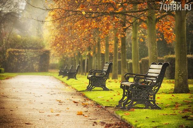 скамейки в парке Лондон