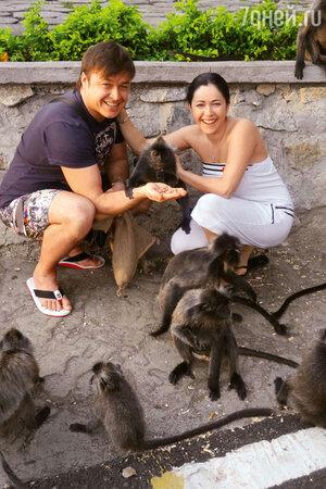 Малайзийские обезьяны славятся своим вороватым характером