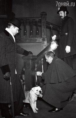 Роль бульдога Тори в «Сокровищах Агры» сыграл любимый пес Ливанова — Бамбула