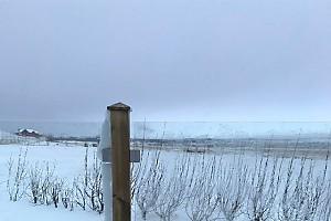 Дима Билан закаляется в Исландии