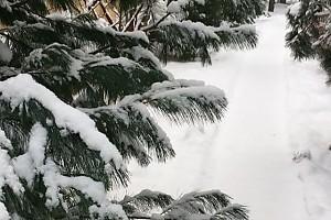 ВИДЕО: Оксана Федорова рассказала, за что любит зиму
