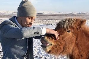 ВИДЕО: Дима Билан мечтает научиться понимать животных