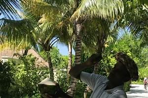 ВИДЕО: Задорожная восхищается талантами жителей Мальдив
