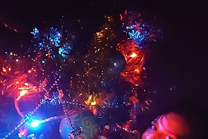 Глафира Тарханова попрощалась с новогодней елкой