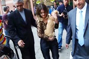 Дрю Бэрримор представила всем свою собаку