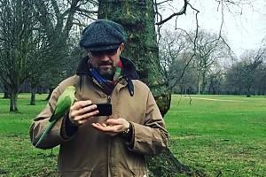 ВИДЕО: Егор Бероев встретил попугаев в лондонском парке