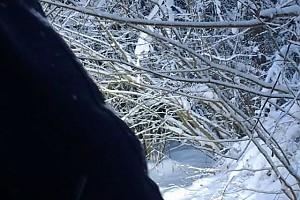 ВИДЕО:  Зимние развлечения Ксении Бородиной